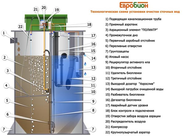 схема конструкции септика Евробион