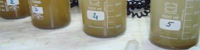 физико-химическая обработка стоков