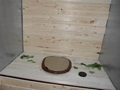 туалет из деревянных досок